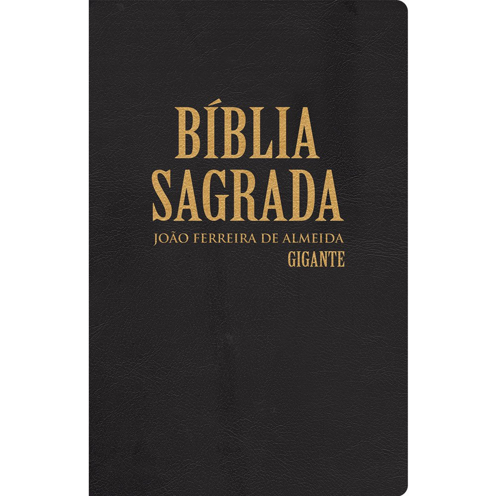 Biblia Sagrada Letra Gigante Semi Luxo Energia Gospel Loja